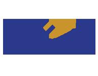 logo design The Synergy Organization